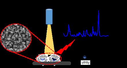 biodetekce